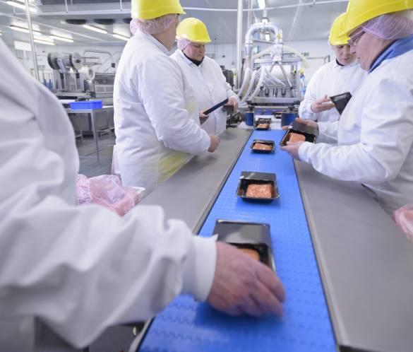 Factory food health and safety